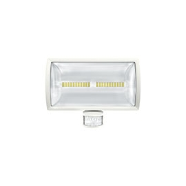 PROJECTOR LEDS theLeda E30 30W IP55 BR