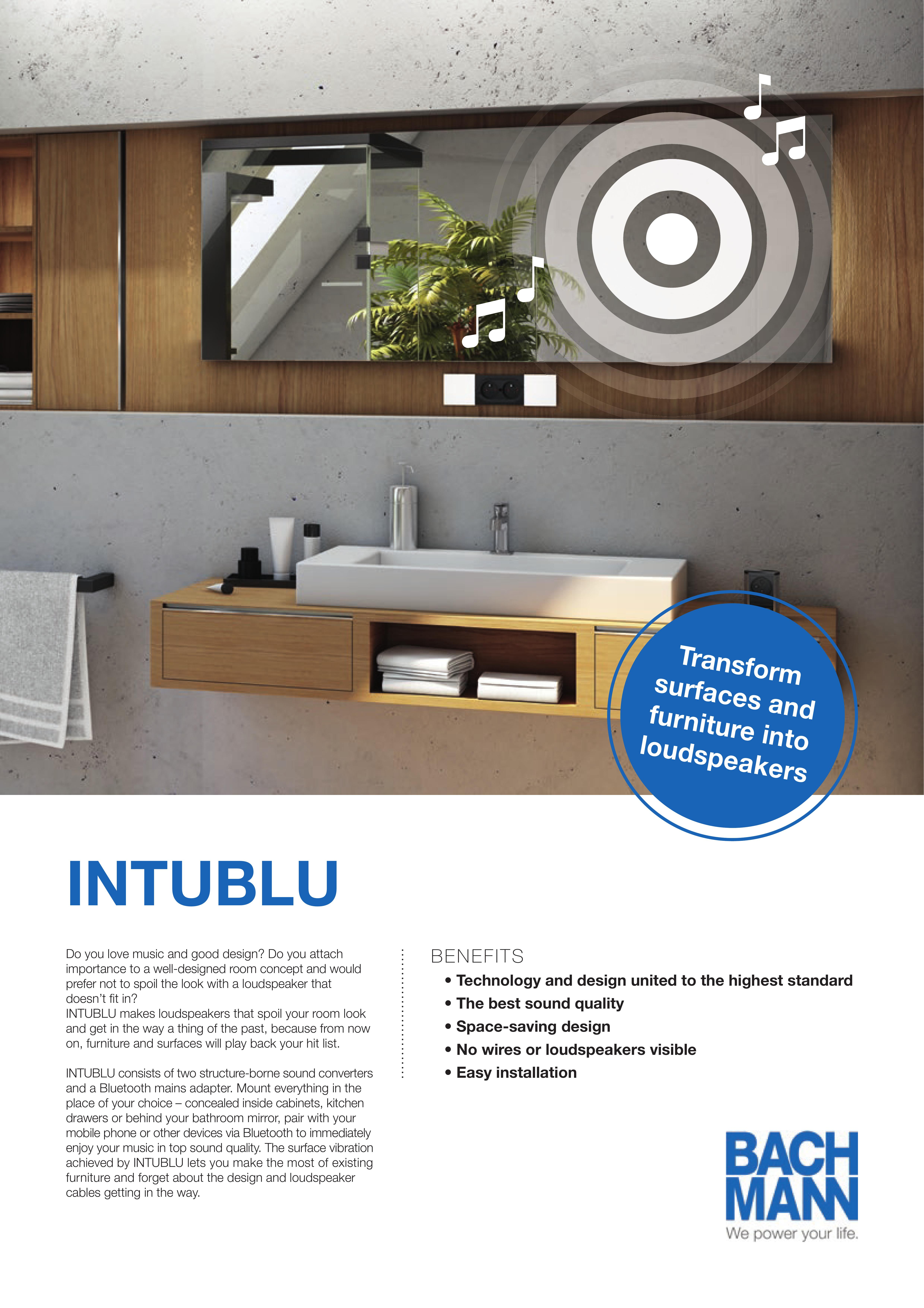 Flyer_INTUBLU