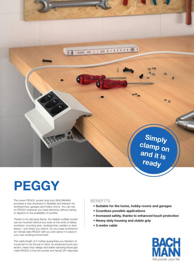 Flyer_PEGGY